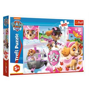 Skye in Action / Paw Patrol 100 Parça Puzzle